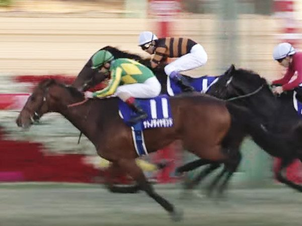 サトノダイヤモンドがキタサンブラックを差し切った有馬記念