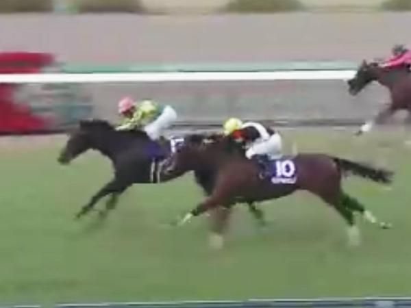 朝日杯、優勝馬サトノアレスと2着馬 モンドキャンノ
