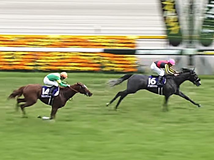 第22回 NHKマイルカップ(G1)は牝馬ワンツーフィニッシュ