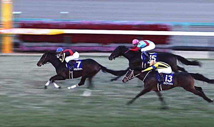 2017年ホープフルS勝ち馬 タイムフライヤー